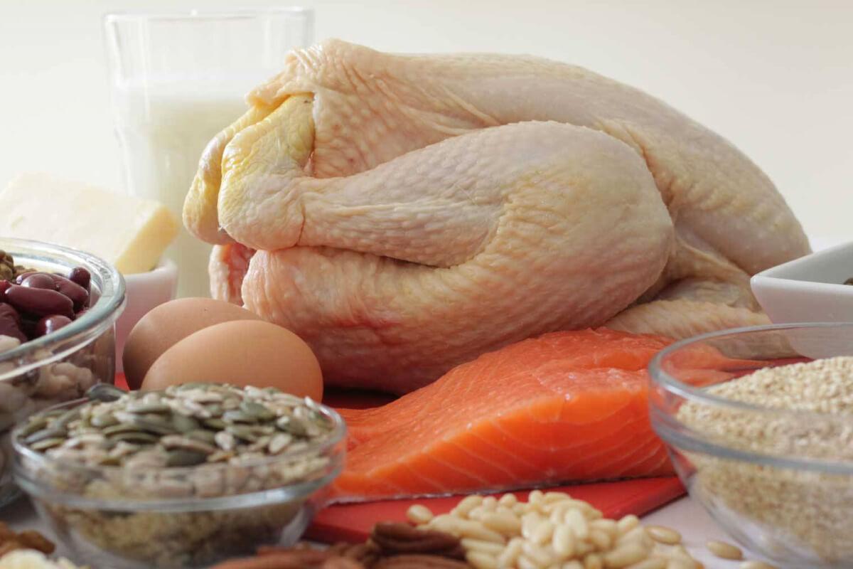 Продукты с большим содержанием белка, почему они важны