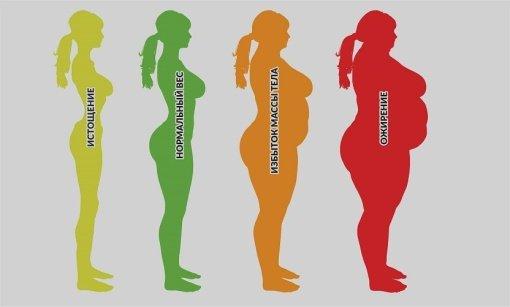 Детальная фотография к статье «Степени ожирения»
